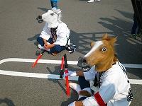 余戸大神輿会の馬